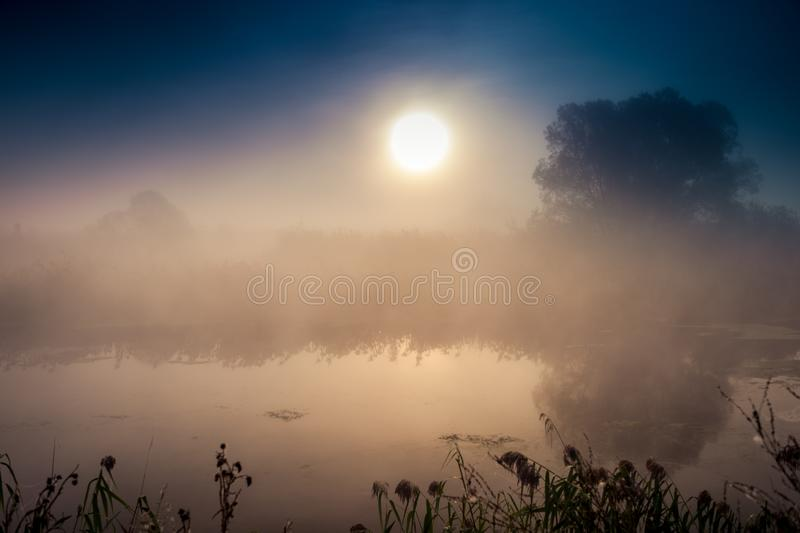 Incredible mystical morning landscape with rising sun, tree, reed and fog over the water. Incredible mystical morning landscape with rising sun, tree, reed and royalty free stock photo