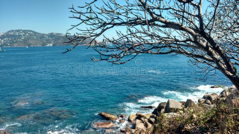 The incredible nature of the sea royalty free stock photo