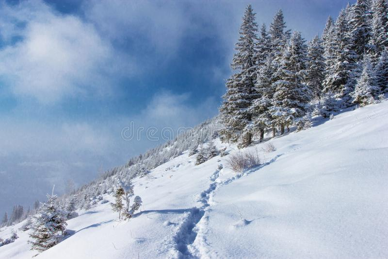 incredible winter mountains landscape  royalty free stock photography