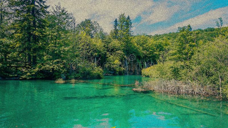 Lake in lonely forest royalty free stock photography