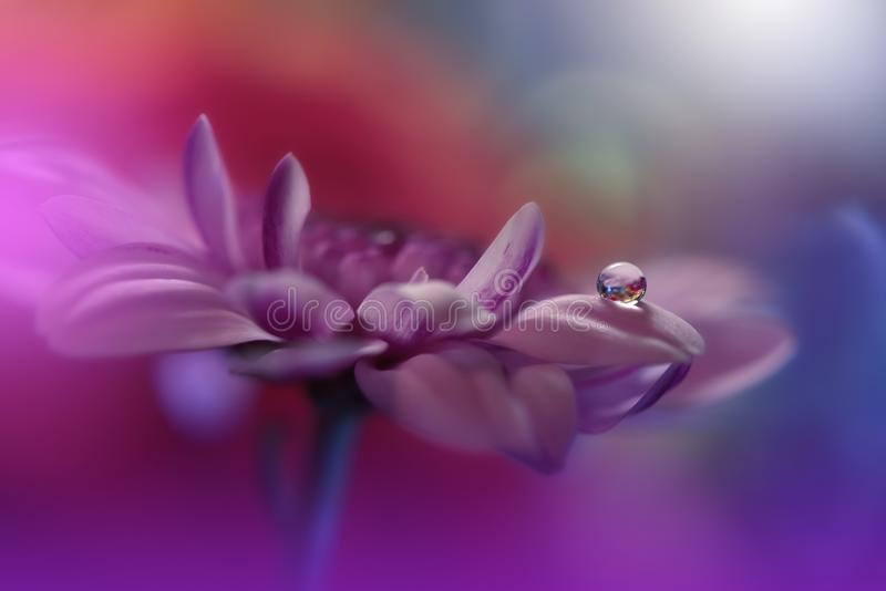 Incredibly härlig natur Konstfotografi Blom- fantasidesign Abstrakt makro, closeup Violett bakgrund Fantastisk färgrik blomma arkivfoto
