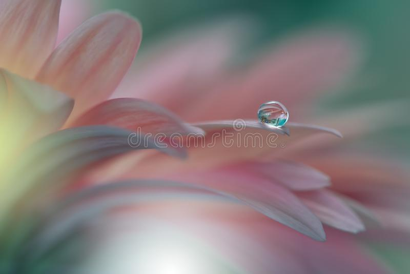 Incredibly härlig natur Konstfotografi Fantasidesign idérik bakgrund Fantastiska färgrika blommor Trädgård droppar Abstrakt begre royaltyfria bilder