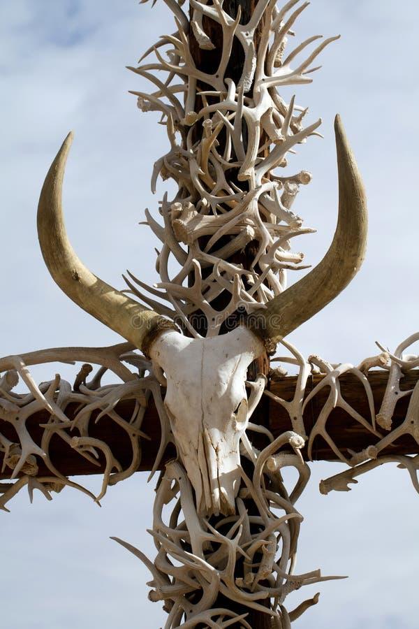 Incrocio dei corni e di un cranio immagine stock libera da diritti