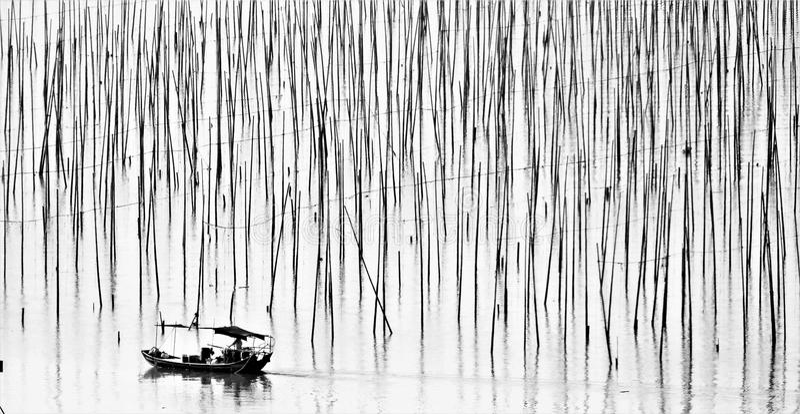 Incrocio della vela il mare di bambù immagini stock