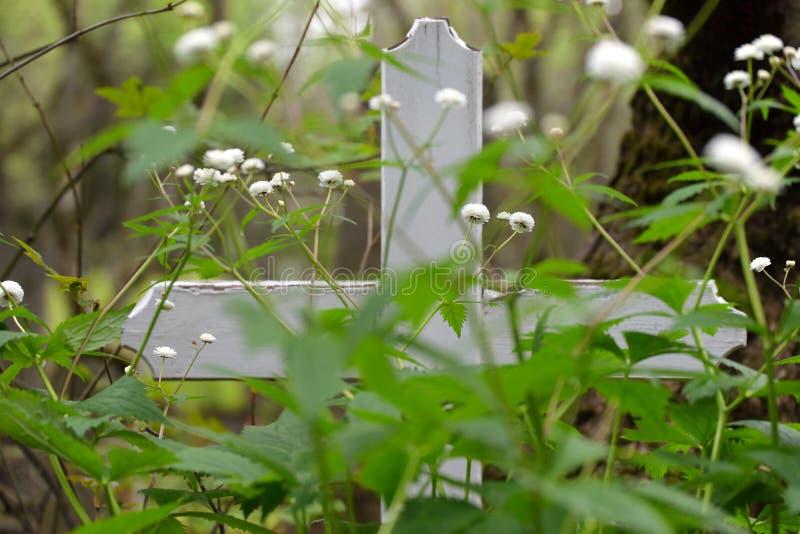 Incrocio di legno bianco al vecchio cimitero di Reykjavik immagini stock