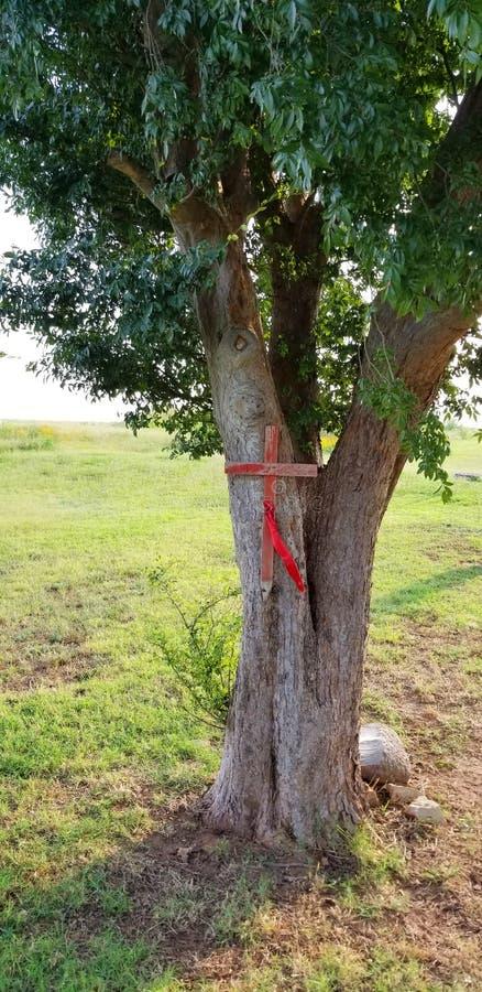 Incrocio di legno rosso inchiodato ai segni Gravesite dell'albero fotografia stock