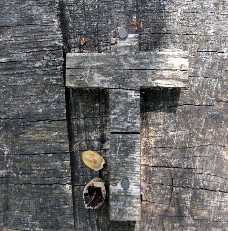 Incrocio nel legno fotografie stock libere da diritti