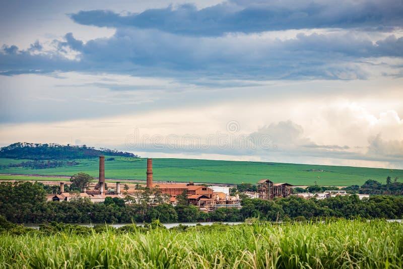 Indústria da fábrica do cana-de-açúcar - Sao Paulo, Brasil fotos de stock royalty free