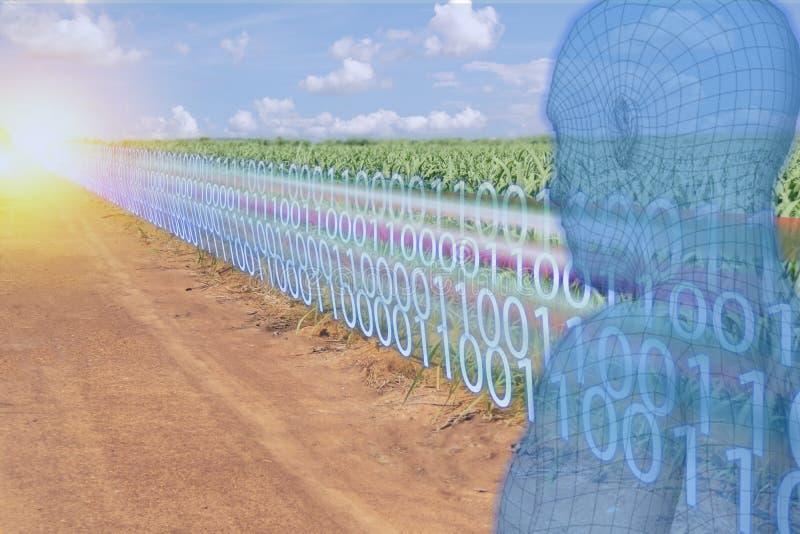 Indústria esperta 4 de Iot 0 transformações digitais com inteligência artificial ou ai no conceito da agricultura foto de stock