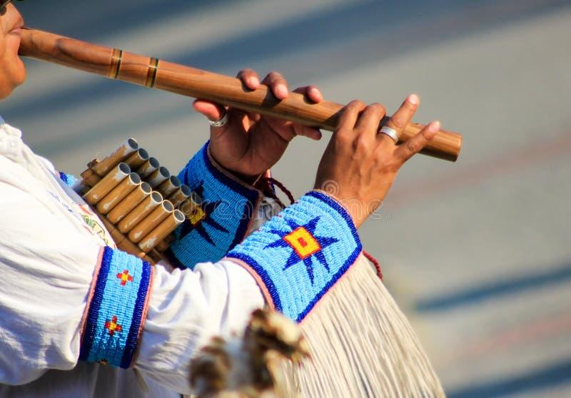 Indiër speelt op de fluit royalty-vrije stock fotografie