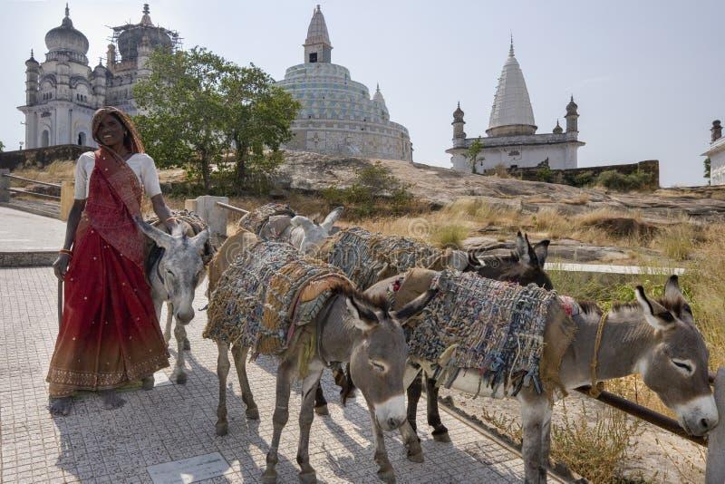 Indiańska kobieta z osłami Sonagiri, India - fotografia stock