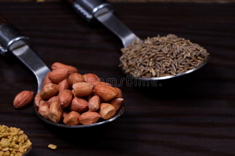 Indiański jedzenie proszek zdjęcie royalty free
