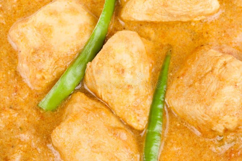 Indiański kurczaka curry'ego zbliżenie obraz royalty free
