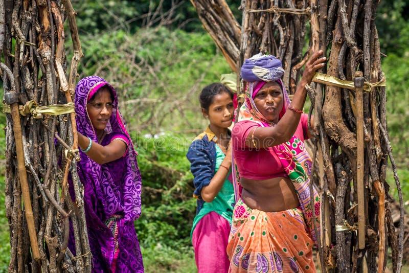 Indiańskie kobiety zbiera drewno zdjęcie stock
