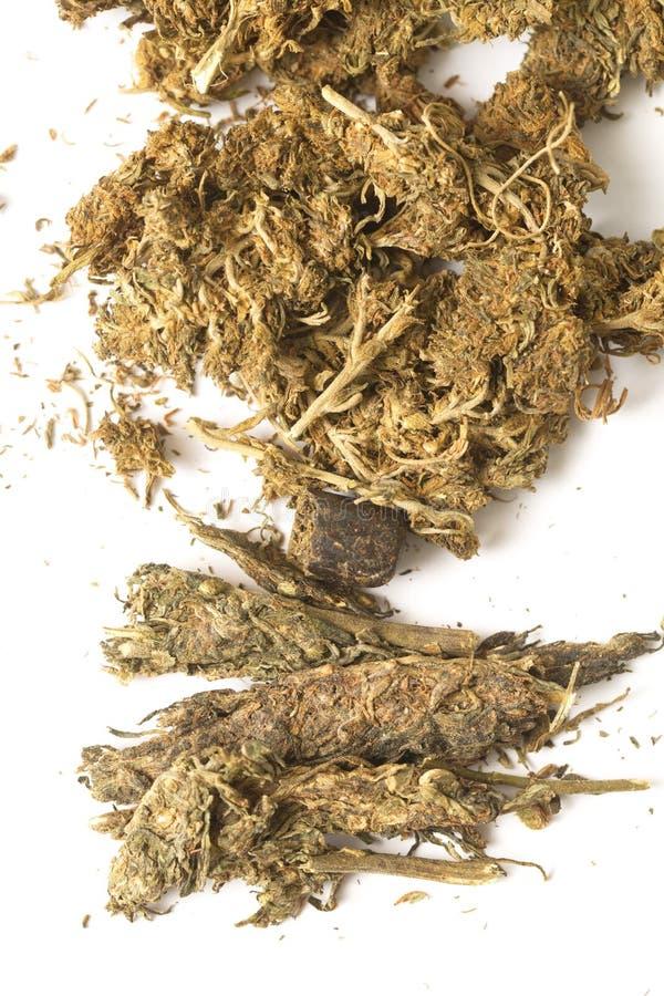 Indiańskiego konopie i haszyszy marihuana obraz stock