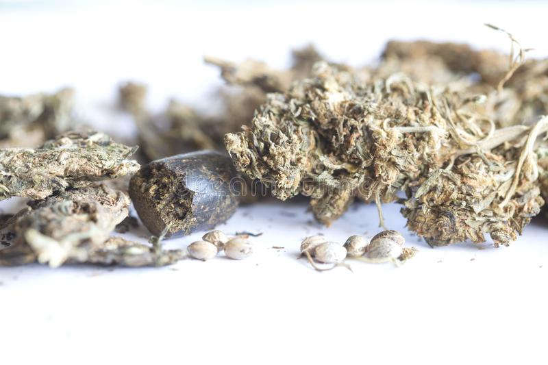 Indiańskiego konopie i haszyszy marihuana zdjęcie royalty free