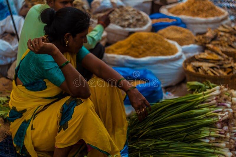 India royalty-vrije stock foto