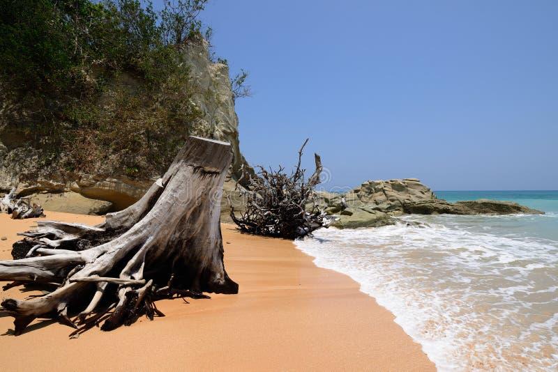 India, Andaman i Nicobar wyspa, Neil zdjęcia stock