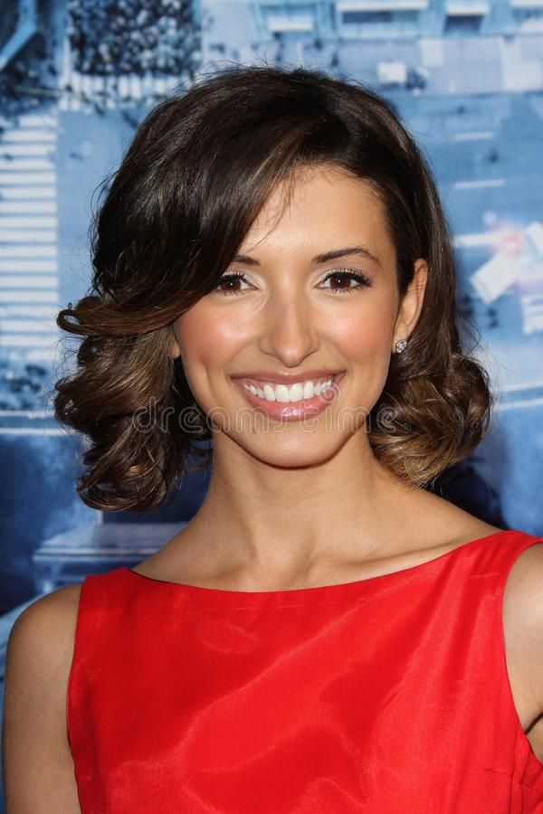 India de Beaufort. At the Man On A Ledge Los Angeles Premiere, Chinese Theater, Hollywood, CA 01-23-12 stock photo
