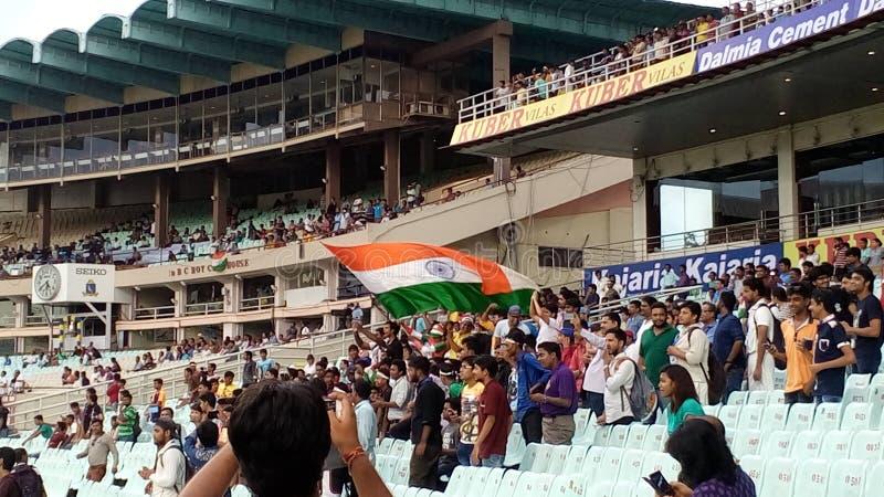 India flag. royalty free stock photos
