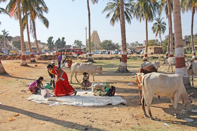 India, Hampi, 02 February 2018. Life in the village of Hampi - lunch, children, cows, palms, girls in a sari. The life of Indian. Residents or people stock photo