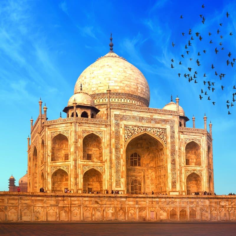 Indisch Paleis Taj Mahal stock foto's