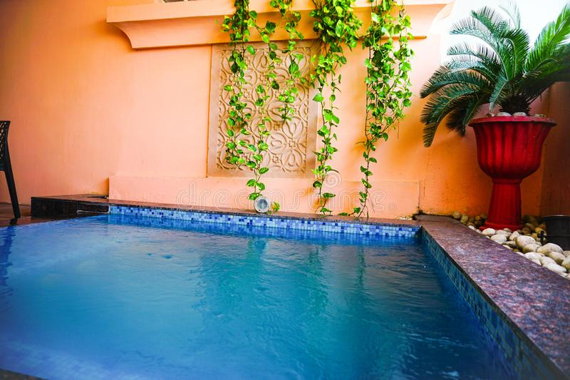 India - jaipur - hotel royal orchid - september 9, 2019, jacuzzi is full of clean water and some green plants planted. India - jaipur - hotel royal orchid stock image