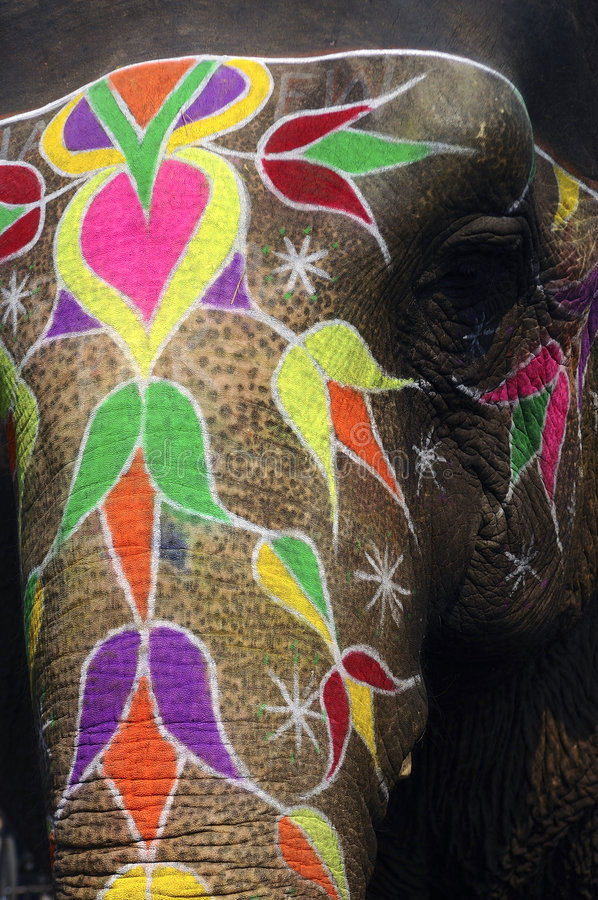 India Jaipur painted elephant. With colorful geometrical and flowers design royalty free stock photography