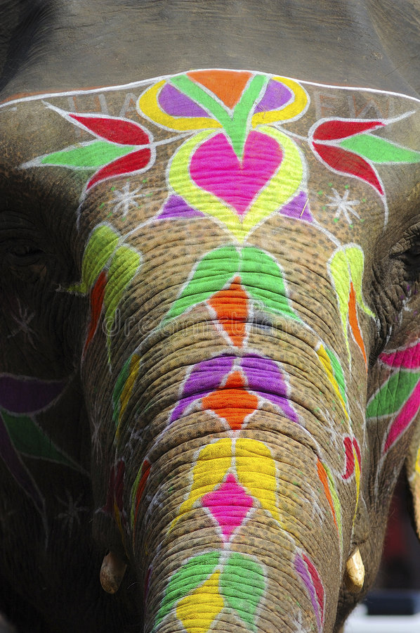 India Jaipur painted elephant. With colorful geometrical and flowers design stock images