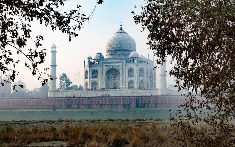 india mahal taj royaltyfria foton