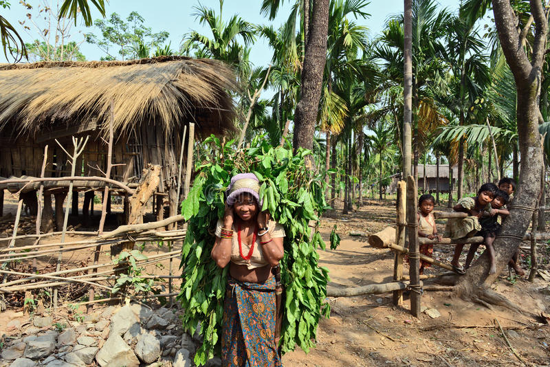India's Most Primitive Tribes royalty free stock images