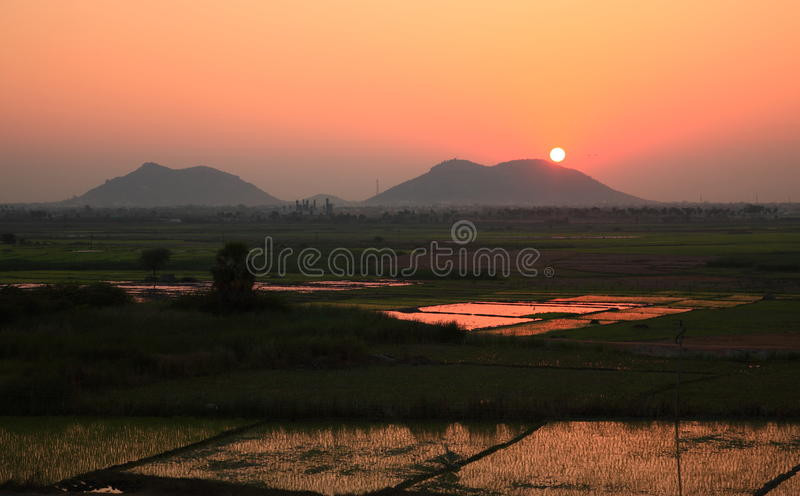 India Sunset. Beautiful sunset in the area of Nalgonda, India in Andhra Pradesh - reflecting in rice patties below stock images