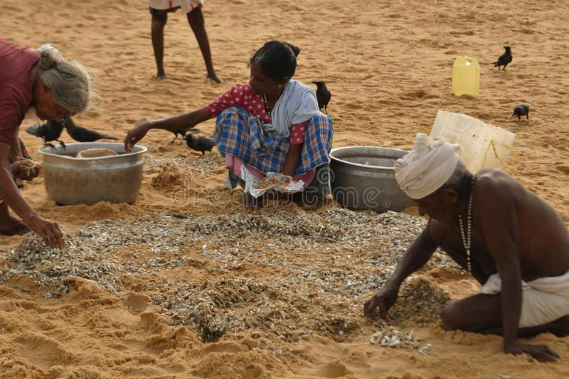 India: Vissers bij Kovalam-Strand in Kerala royalty-vrije stock afbeelding