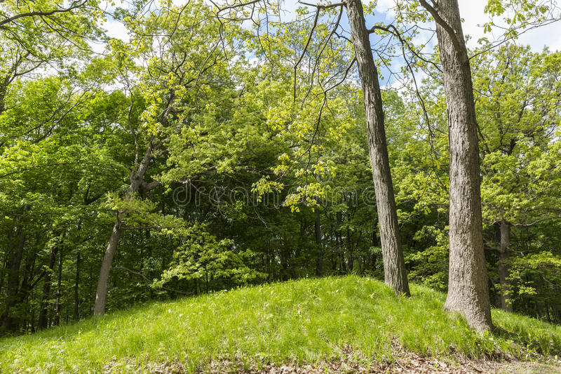Indian Burial Mound stock photo