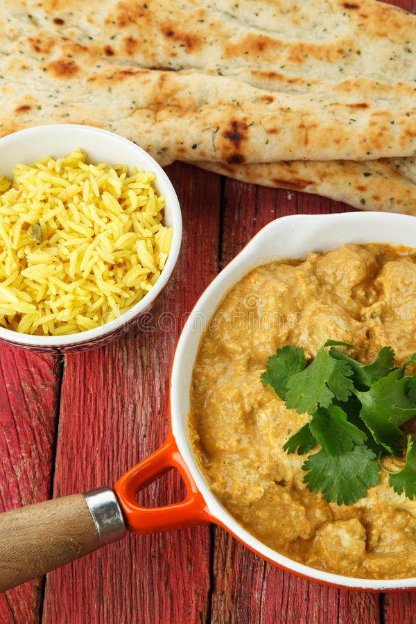 Download Indian Chicken Curry stock photo. Image of yellow, rice - 25420518