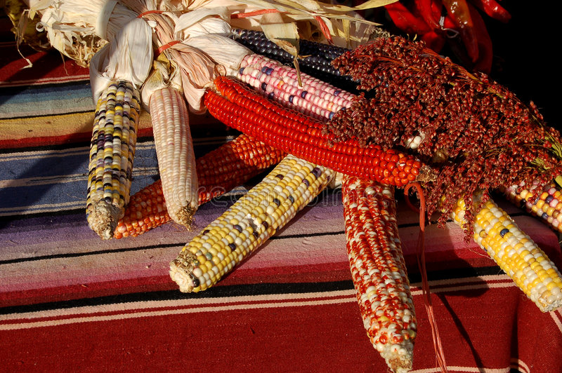 Indian Corn. Bunches of indian corn on display at a farmer's market stock photo