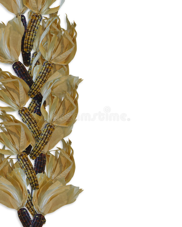 Indian corn Autumn design royalty free stock images