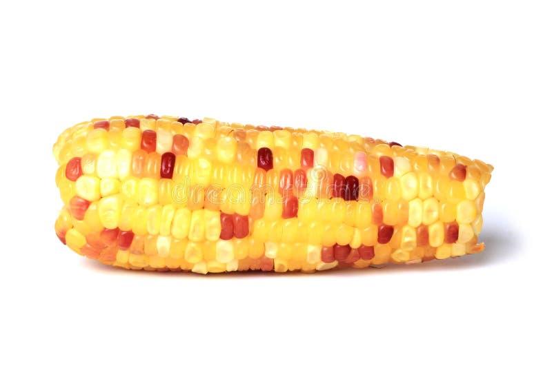 Indian corn stock photos