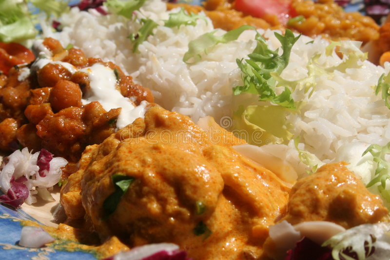 Indian dish. A mixture of chicken with masala sauce, lentils and rice, served with a lettuce decoration. Typical indian dish royalty free stock images