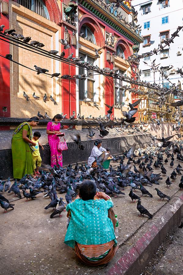 Indian family surrounded with pigeons. Two nearby vendors are ready to sell them pigeon food. stock photos