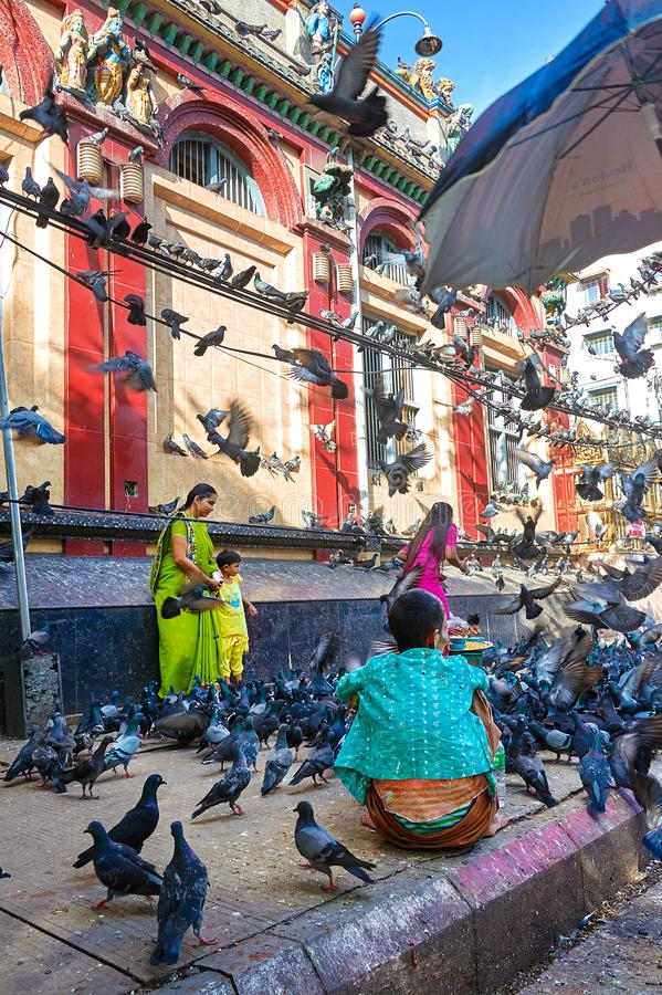 Indian family surrounded with pigeons. Two nearby vendors are ready to sell them pigeon food. stock photo