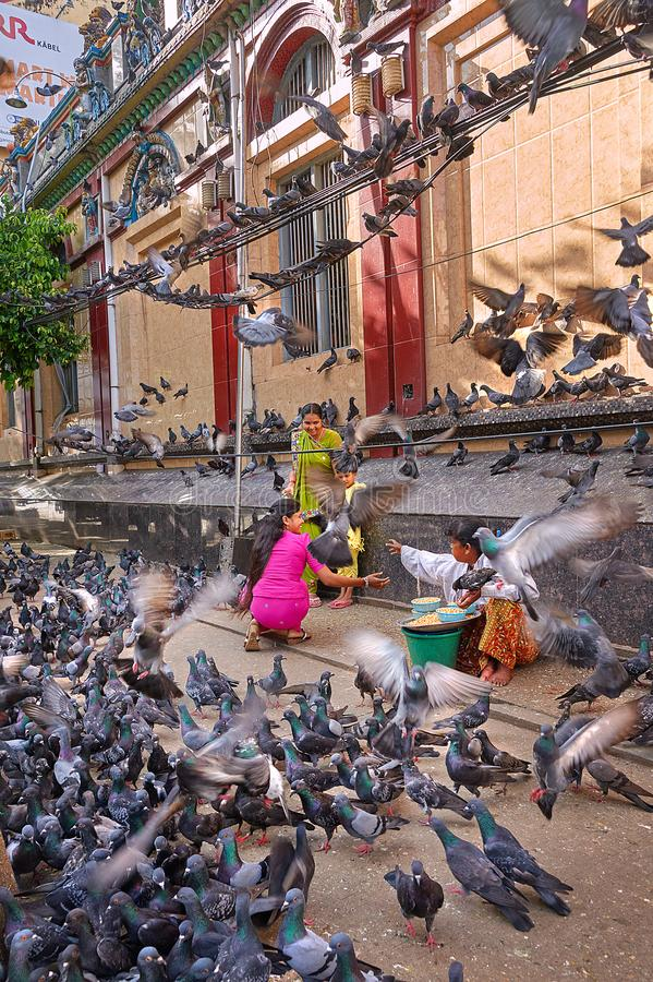 Indian family surrounded with pigeons. Two nearby vendors are ready to sell them pigeon food. stock images