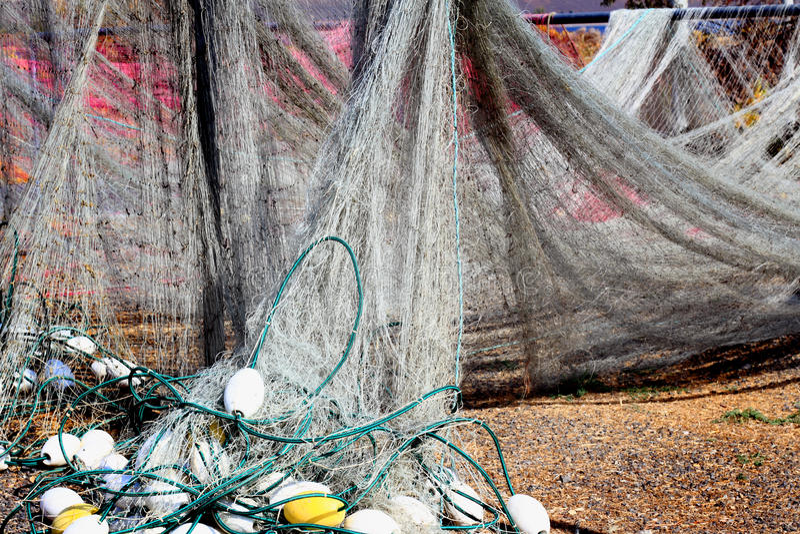 Indian Fishing Nets Drying stock image