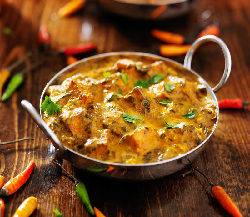 Indian food - saag paneer curry dish. Indian saag paneer curry dish with chopped cilantro. shot from high up royalty free stock photo