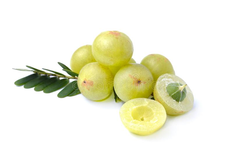 Indian gooseberries on white background stock images