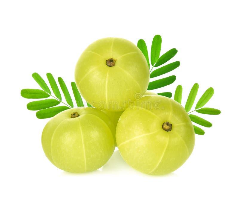 Indian gooseberry isolated on white background royalty free stock image