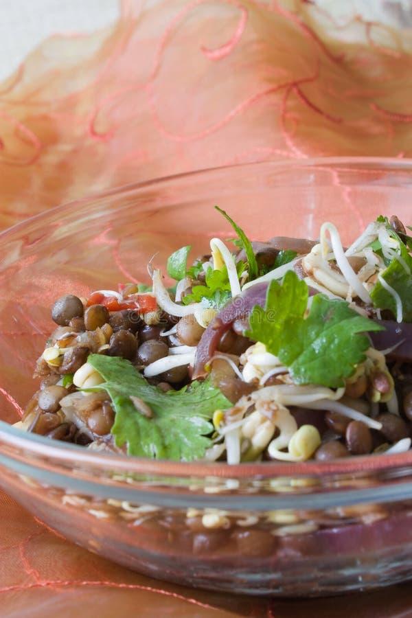 Download Indian lentil salad stock image. Image of dish, lentil - 12059603