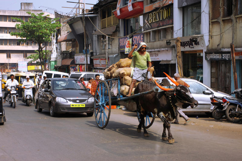 Indian man and a cart with a bull stock image