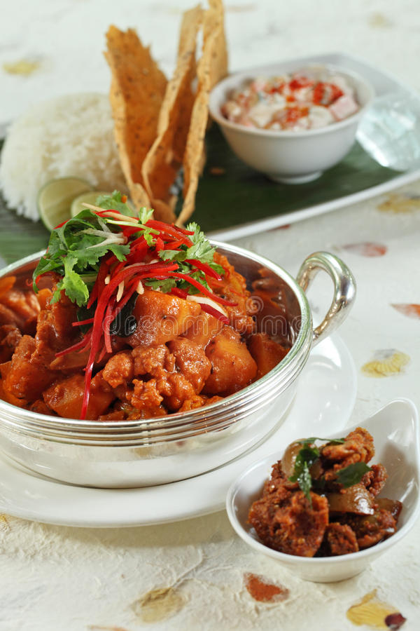 Indian meal food. Indian curry meal with white rice ready to serve stock photography