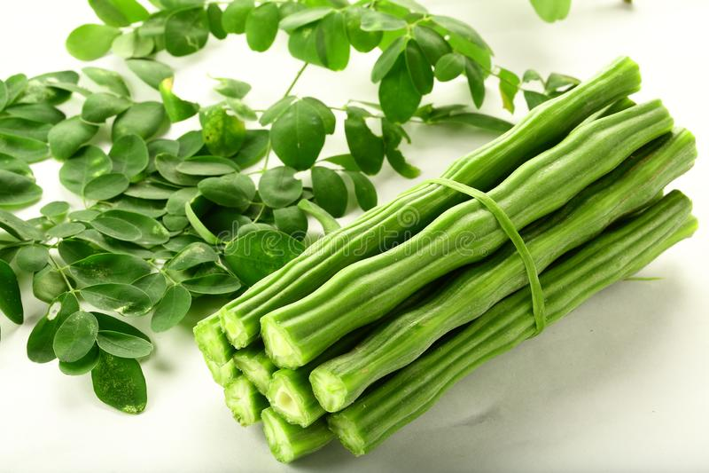 Indian moringa oleifera vegetable on white background. stock images